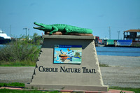 Creole Nature Trail in Calciseu Parish, LA TEX_5822