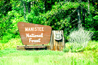 Manistee National Forest by Lake Michigan, MI 8-19-2015