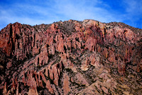 Chisos Mountains, Big Bend National Park, TX 2-9-14 SEP_7964