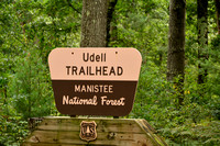 Manistee National Forest Udell Trailhead, MI where I saw lifer Ruffed Grouse 8-2015 BIG_9922